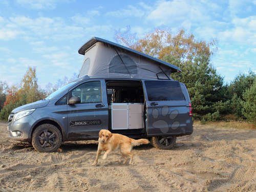 Wuff! Der optimale Campingbus für Bello